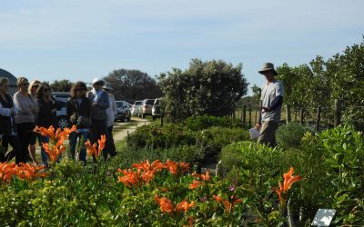 Charles gives visitors an in-depth talk on plants